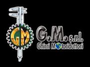 G.M. srl